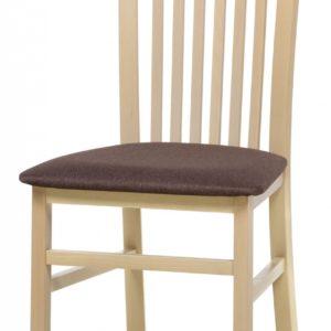 Čalouněná jídelní židle Štefan 4
